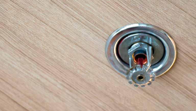 Por que é importante verificar se tem Sprinklers no local que você frequenta?